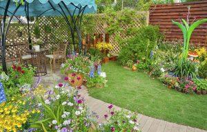 A garden with a good landscape
