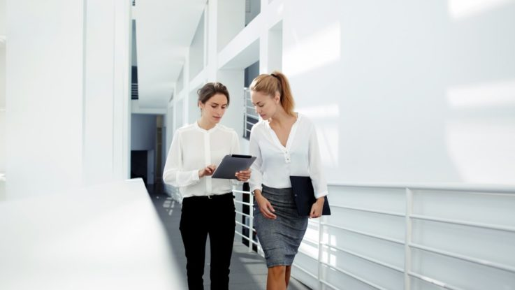Businesswomen discussing a file